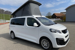 Peugeot Bravia 495 FUN 2.0 180PS Van
